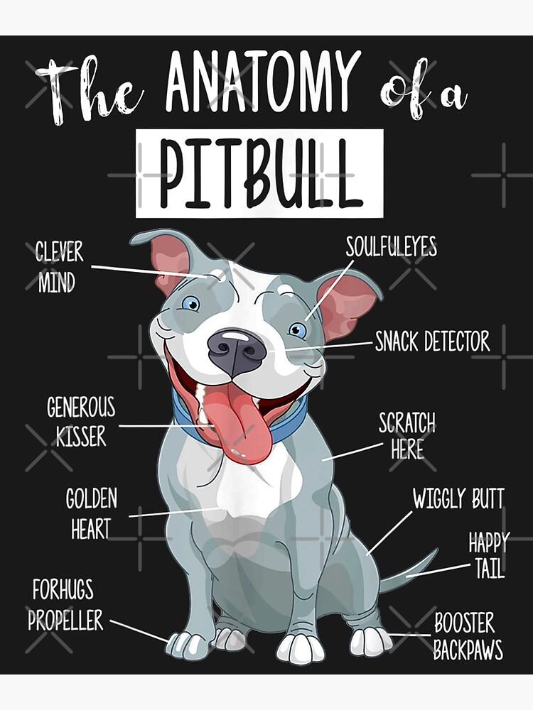 Blue Nose Pitbull Anatomy - Pittie Mama Dad Youth Gift  by BasirKazimov