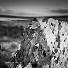 Standing stone at Achavanich, Caithness, Scotland by Iain MacLean