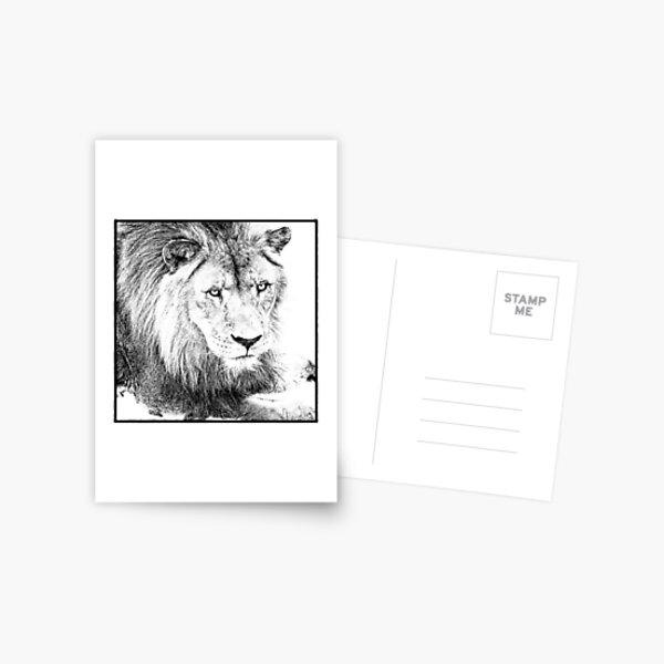 The King Postcard