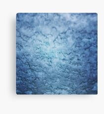 Frozen windscreen Canvas Print
