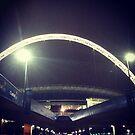 Wembley Arch. Night. by Robert Steadman