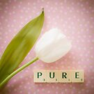 Pure - White tulip and Scrabble tiles. by eyeshoot