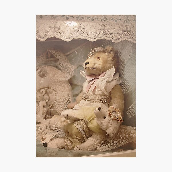 Teddybears in lace Photographic Print