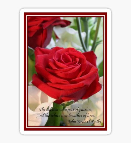 Whispers of Passion and Love Red Rose Greeting Card Sticker