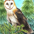 Barn Owl in the Woods by Ashley Weiler