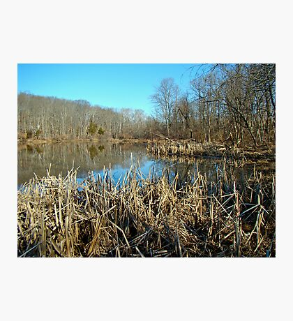 Perkiomen Creek Green Lane Recreational Area - Pennsylvania Photographic Print