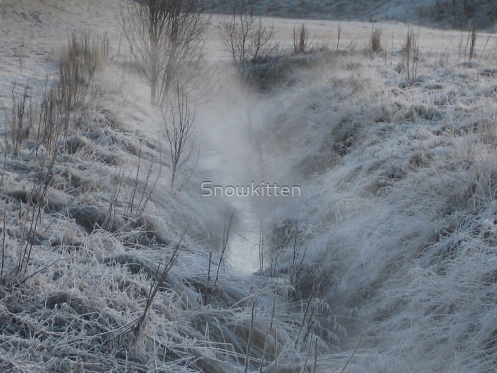 A Misty Morning by Snowkitten