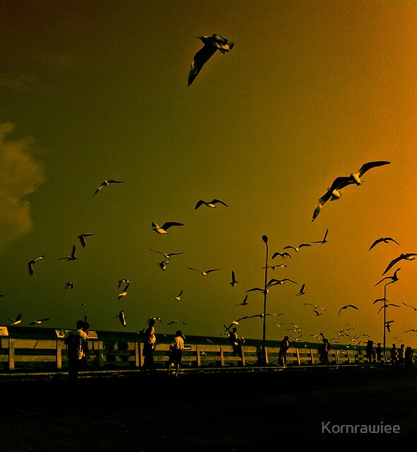 Happiness is...you appreciate surrounding... by Kornrawiee