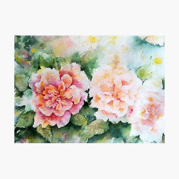 Dreamy romantic roses Photographic Print