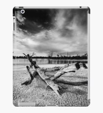 Fallen tree in dry lake - Kings Billabong iPad Case/Skin