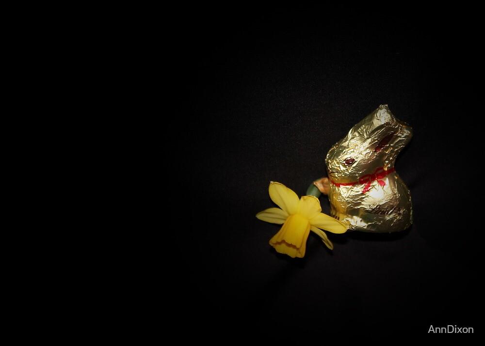 Easter Bunnie by AnnDixon