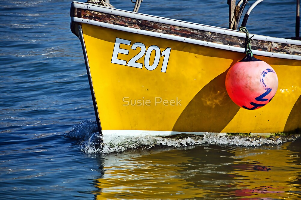 E201 Coming Into Harbour 2 by Susie Peek