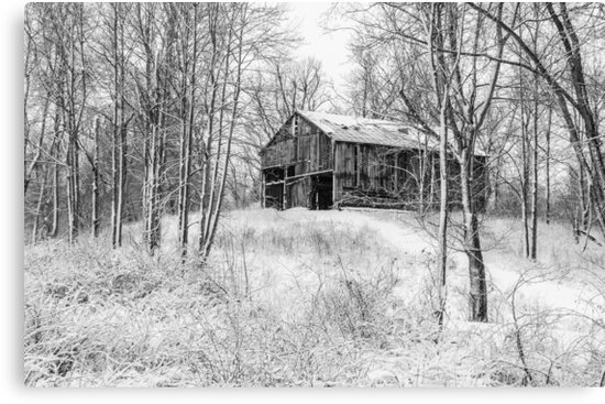 Winter Barn 2 - Black and White by Mary Carol Story