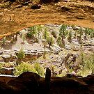 Gila Cliff Dwellings by Nancy Richard