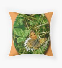 American Copper Butterfly - Lycaena phlaeas Throw Pillow