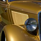 Golden Gills by Norman Repacholi