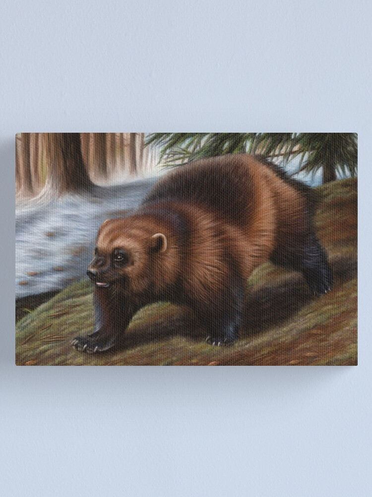 Alternate view of Wolverine Wildlife Artwork Canvas Print