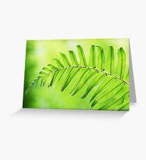 Lime Green Fern Leaf  Greeting Card