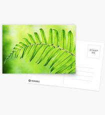 Lime Green Fern Leaf  Postcards