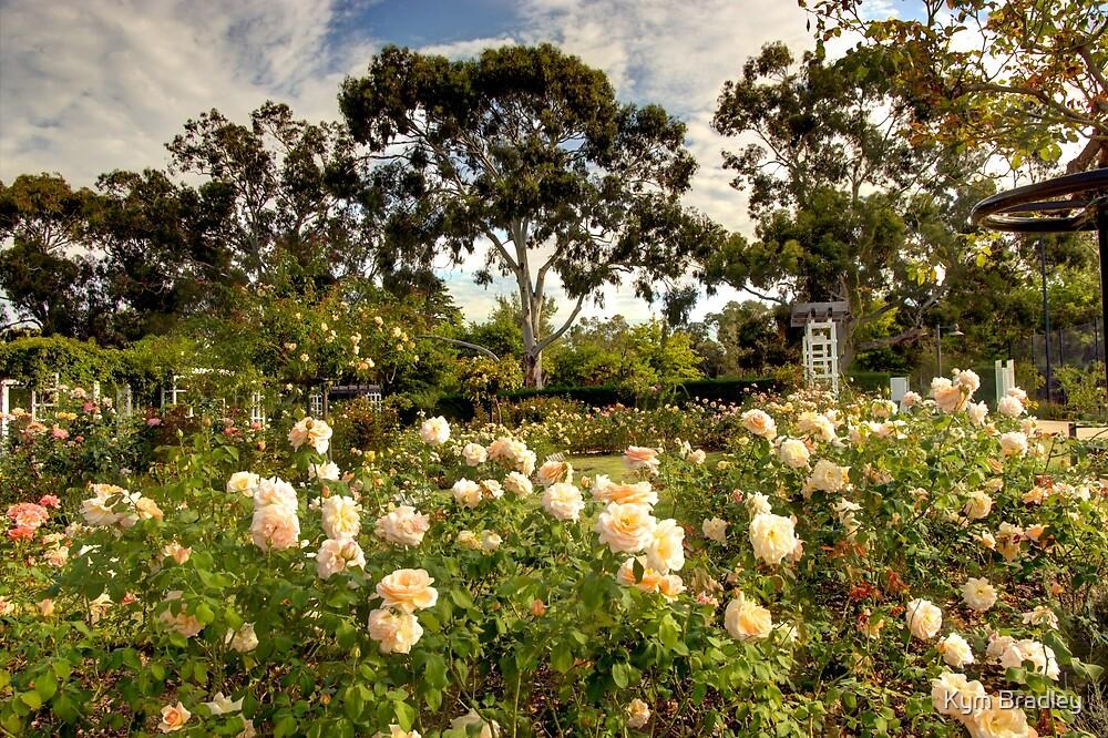 old parliament house gardens Canberra Australia  by Kym Bradley
