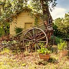 Old Cart Hills Station  by Kym Bradley
