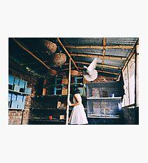 her birds Photographic Print