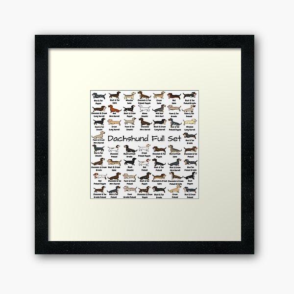 Dachshund Full Set Framed Art Print