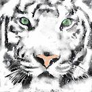 White Tiger by John Ryan