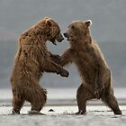 Dueling Bears by Bear-Images