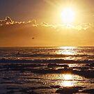 newcastle sunrise by jane walsh