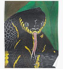 Black Snake Poster