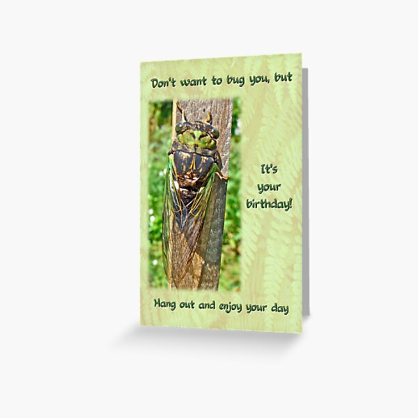 Birthday Greeting Card - Annual Cicada Greeting Card