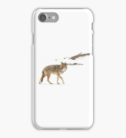 On the hunt - Coyote iPhone Case/Skin