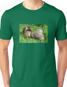 Bullied into Submission - Mating Tortoises T-Shirt