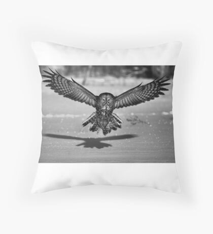 Great Grey Owl B&W Throw Pillow