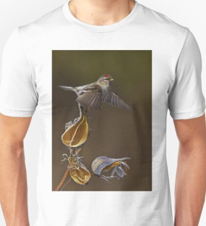 Redpoll Takes Flight T-Shirt