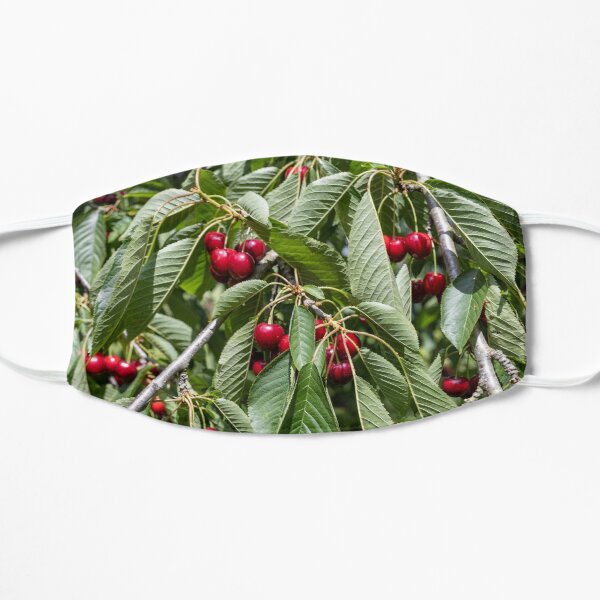 Red cherries in a tree Mask