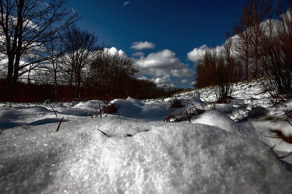 A BEAUTIFUL WINTERS DAY by leonie7