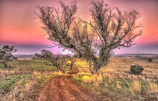 On The Road Again - Cootamundra NSW - The HDR Experience by Philip Johnson