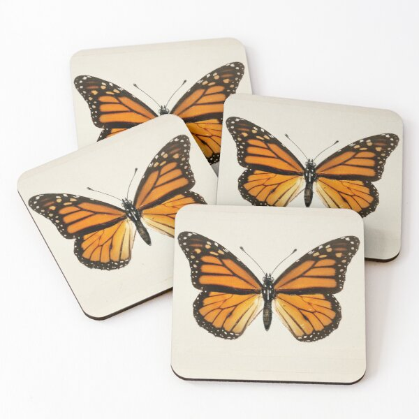 Monarch Butterfly | Monarch Butterflies | Moths and Butterflies of the United States | Vintage Butterflies |  Coasters (Set of 4)
