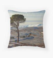 Winter in Strathglass Throw Pillow