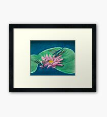 Dragonflies On Water Lily Framed Print
