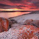 Bicheno sunrise by benivory