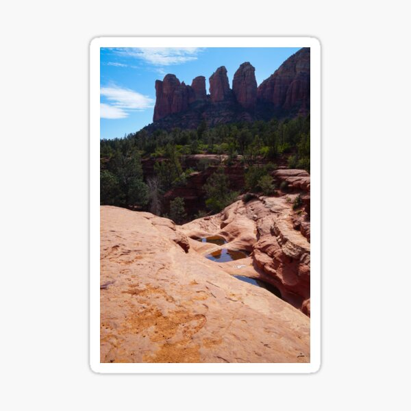 Reflections in the Shallow Sandstone Pools Sticker