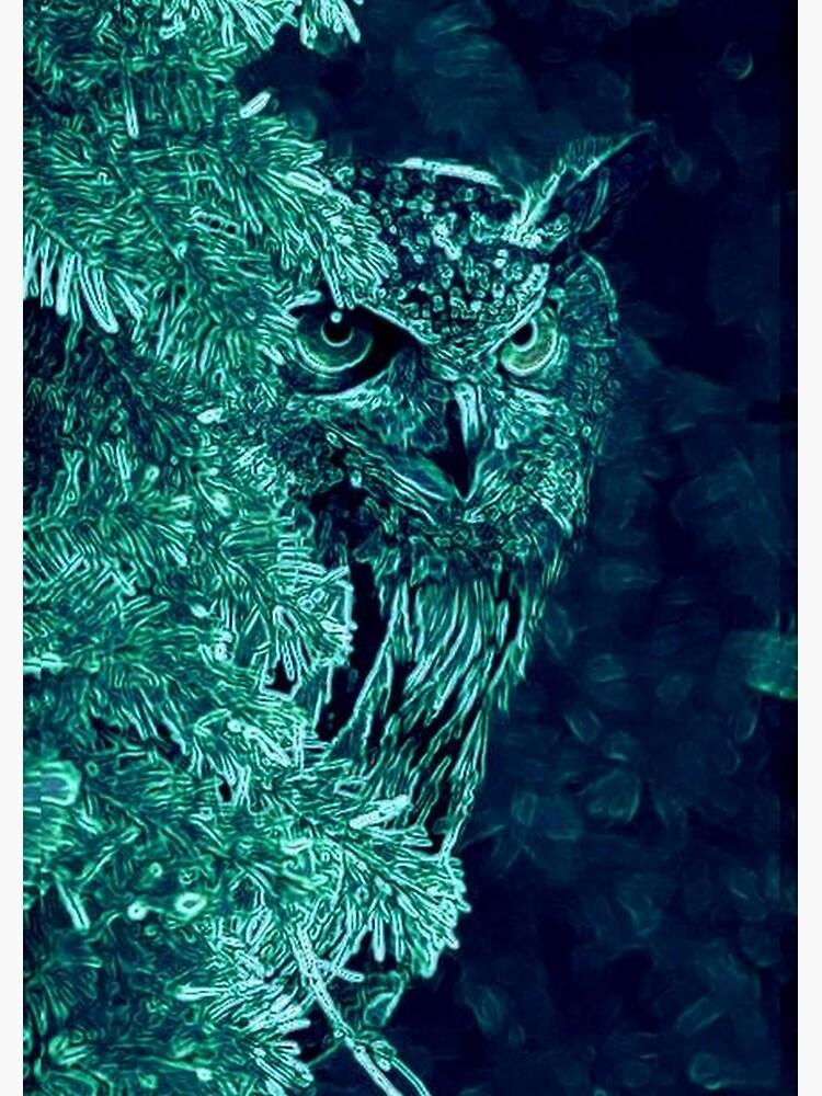 OWL PEEKABOO by michaeltodd