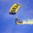 U.S. Navy Parachute Team, the Leap Frogs .2 by Alex Preiss