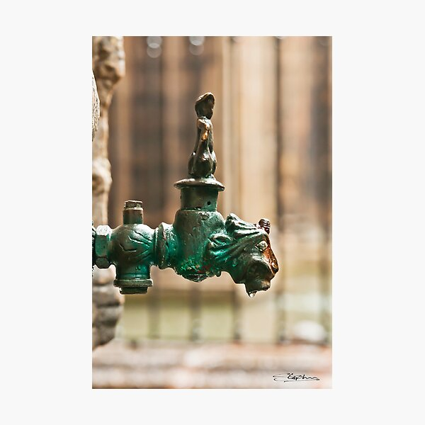 Ornate Tap Photographic Print