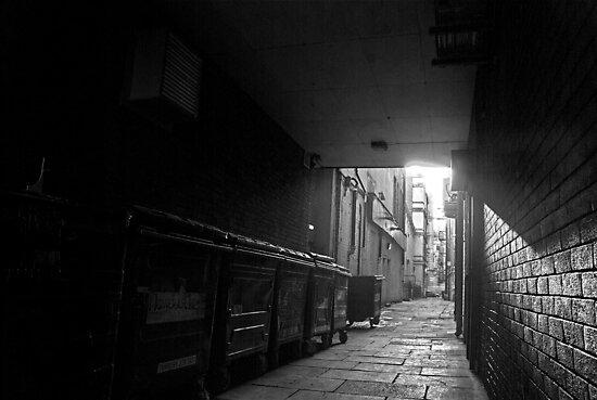 Wheelie Bin Alley by Andrew Pounder