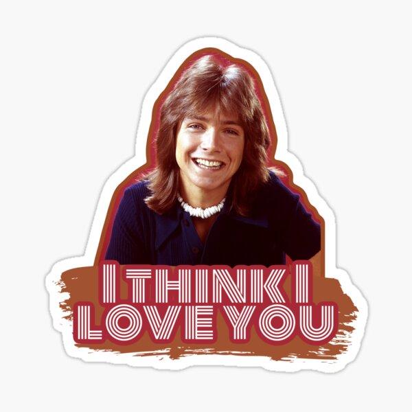 I Think I Love You Sticker