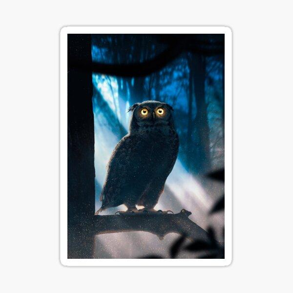 I am an cute Owl Sticker